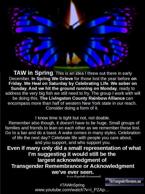 TAW in Spring 3.jpg